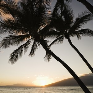 Answering Serivce for Hawaii