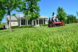 Answering Service for Lawn Care Company